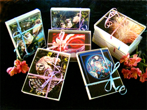Greeting cards for sale m4hsunfo